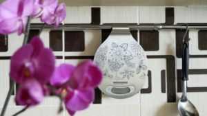 👉Обзор кухонных весов Redmond RS-M734 | Кухонные весы | Обзоры | Клуб DNS